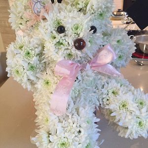 TEDDY DAISY FLOWER ARRANGEMENT
